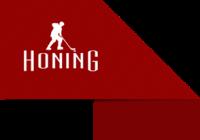 Franquias Honing Brasil